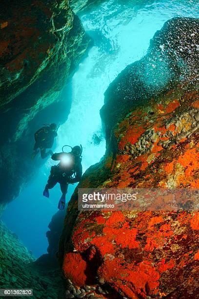 Underwater  Scuba diving   Explore coral reef   Sea life orange sponge