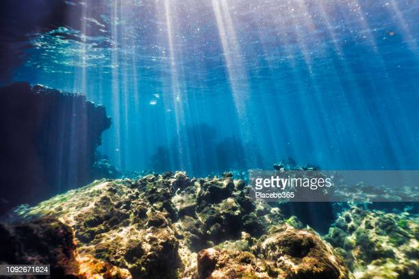 underwater seascape, ko haa island 3, andaman sea, krabi, thailand - underwater stock pictures, royalty-free photos & images