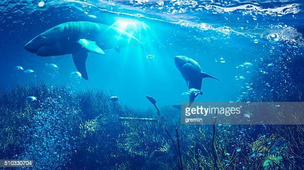 Unterwasser-Szene mit Haimotiv