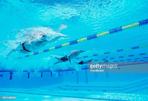 Underwater shot of four male athletes competing in swimming pool