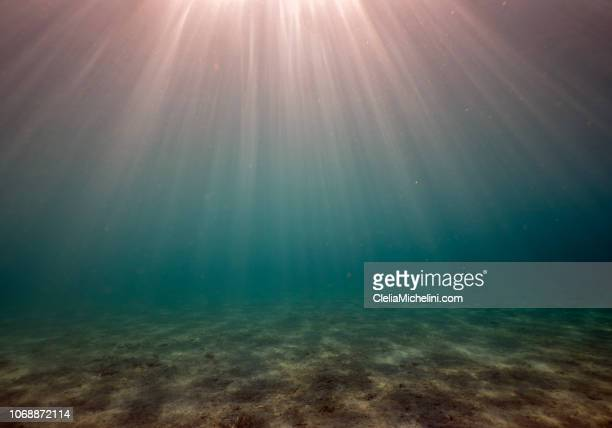 underwater sunset - ocean floor stock pictures, royalty-free photos & images