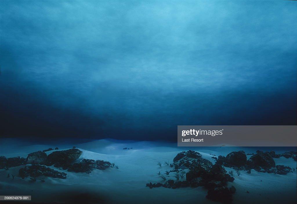 Underwater terrain : Stock Photo