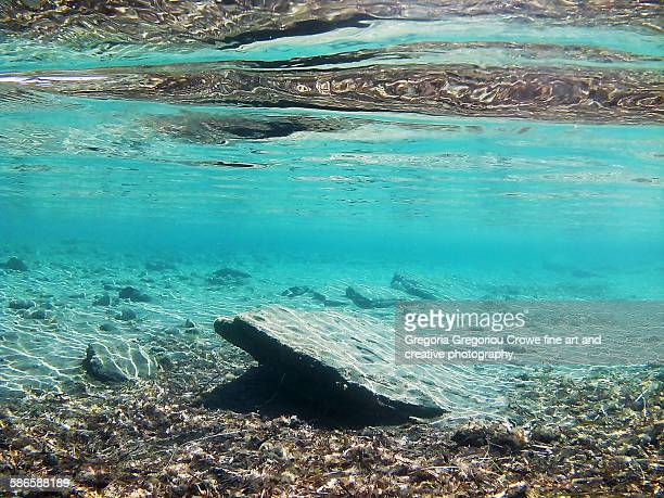 underwater terrain - gregoria gregoriou crowe fine art and creative photography stock photos and pictures
