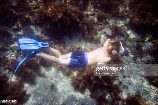 underwater view of boy diving - knaben in badehosen stock-fotos und bilder