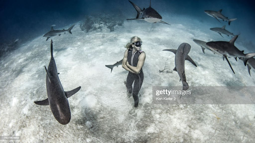 Underwater view of female free diver standing on seabed surrounded by reef sharks, Bahamas : Stock Photo