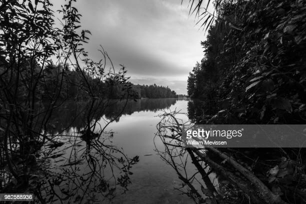 undisturbed reflections 'black & white' - william mevissen stock pictures, royalty-free photos & images