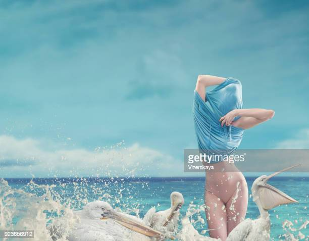 undressing women in ocean waves with pelicans - donne mentre si spogliano foto e immagini stock
