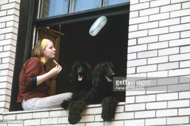 Une femme assise sur le rebord de sa fenêtre avec ses deux chiens noirs circa 1970 New York EtatsUnis