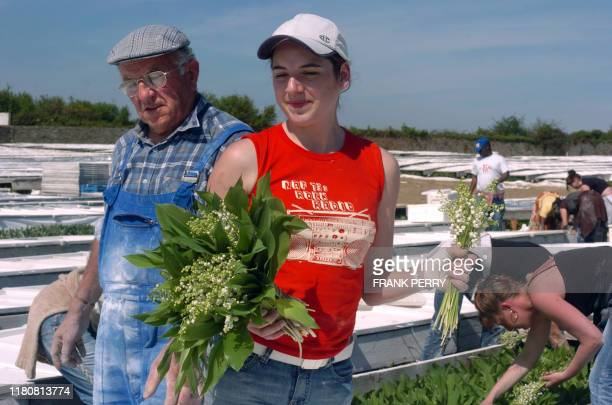 Une jeune femme cueille du muguet dans l'exploitation de monsieur et madame Richard maraîchers de BasseGoulaine près de Nantes le 23 avril 2007 Le...