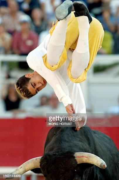 une personne participe à un concours de recortadores effectuant un saut périlleux audessus d'un toro de combat le 14 septembre 2003 en clôture de la...
