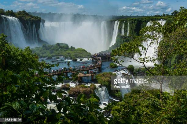 unesco world heritage sight, iguazu falls, brazil - イグアス滝 ストックフォトと画像