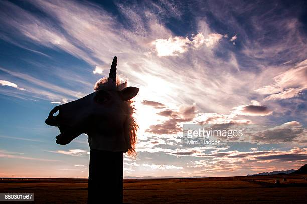 Unicorn Head Silhouette and Cloudy Sky