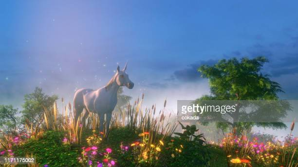 unicorn in the wild - ethereal stock pictures, royalty-free photos & images