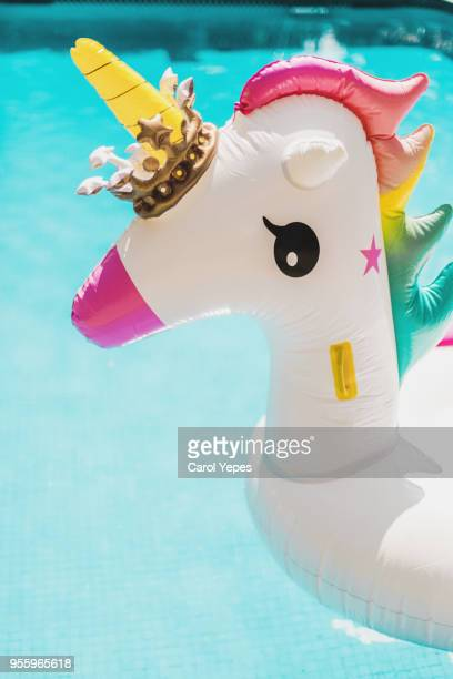 unicorn inflattable ring at pool  summertime