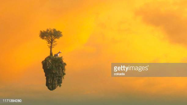 unicorn on a floating island - mythological character stock pictures, royalty-free photos & images