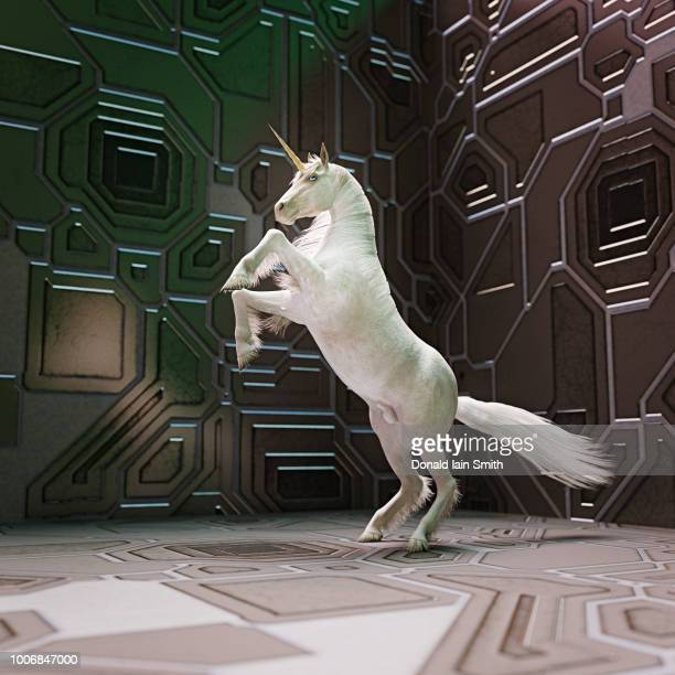 unicorn rearing on hind legs in futuristic setting - unicorn stock pictures, royalty-free photos & images