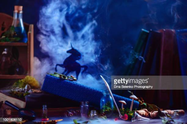 unicorn silhouette on a book of fairy tales in a dark witch workplace with potions, scrolls, and moss. magical creature concept with rising smoke and copy space - alchimie photos et images de collection