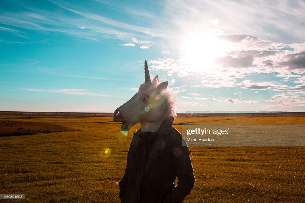 Unicorn Standing in Sunny Field : Stock Photo