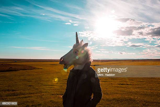 unicorn standing in sunny field - unicorn stock pictures, royalty-free photos & images