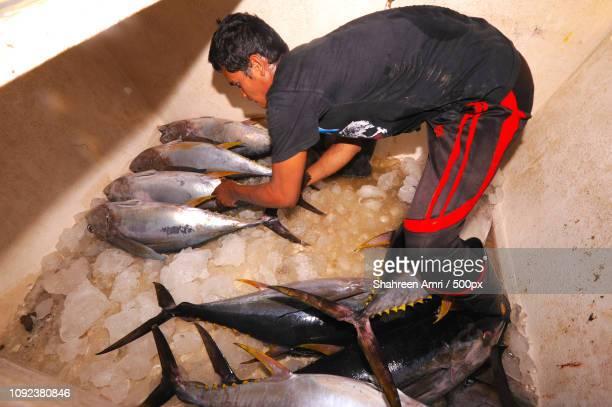 SEMPORNA, MALAYSIA- MARCH 6, 2015 : Unidentified bajau man loadi