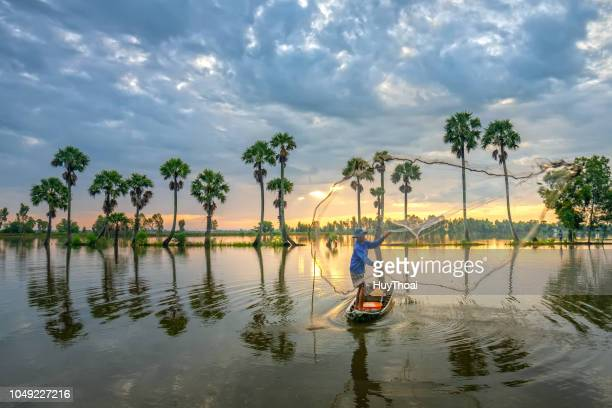 unidentified fishers throw fish net to catch fish a lake in the morning - mekong delta stock pictures, royalty-free photos & images