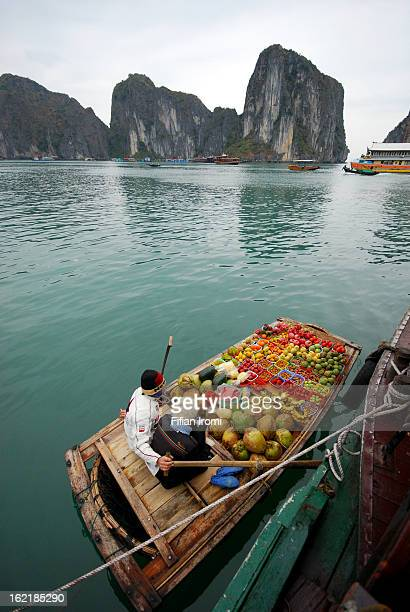 CONTENT] Unidentified fruit seller sells various types of fruits on boat in Halong Bay Vietnam