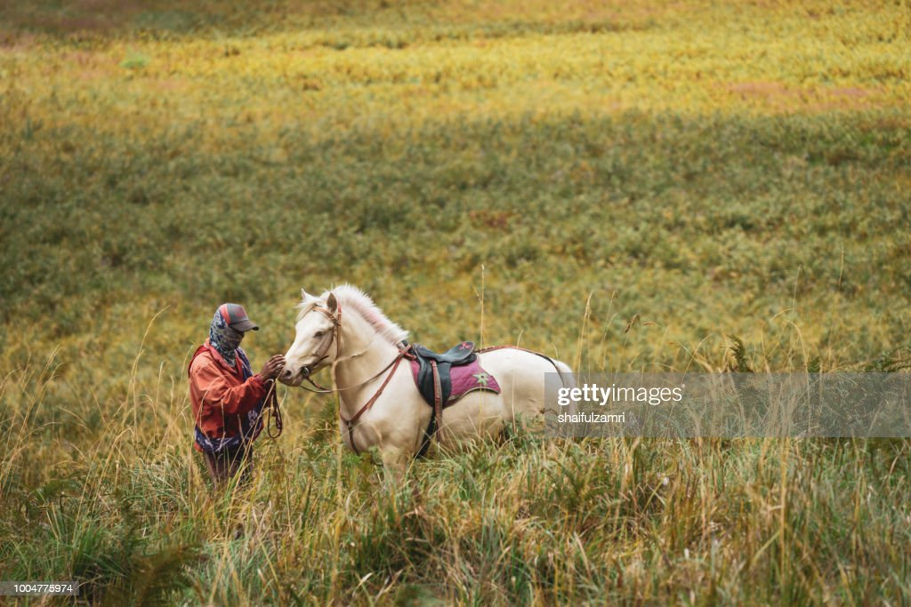 Unidentified local people or Bromo Horseman at the mountainside of Mount Bromo, Semeru, Tengger National Park, East Java of Indonesia. : Stock Photo