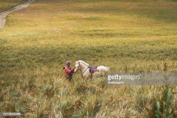 unidentified local people or bromo horseman at the mountainside of mount bromo, semeru, tengger national park, east java of indonesia. - shaifulzamri stock-fotos und bilder