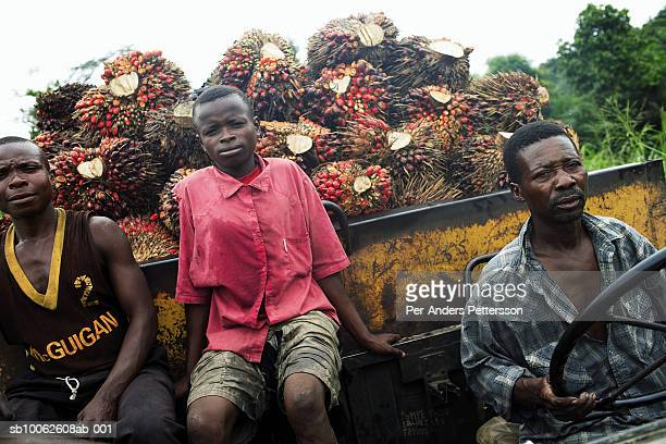 Unidentified men rides in an old truck with a load of palm tree fruit on March 17, 2006 outside Lukutu, Congo, DRC. Lukutu, a small village along the...