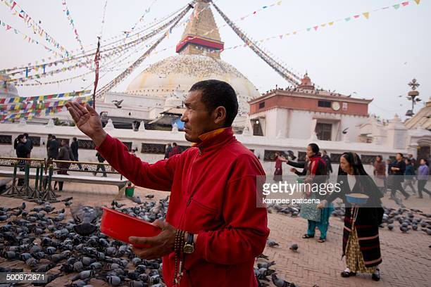 CONTENT] Unidentified people feeding Crowd of pigeons are flying over the great Bodhnath stupa Nepal