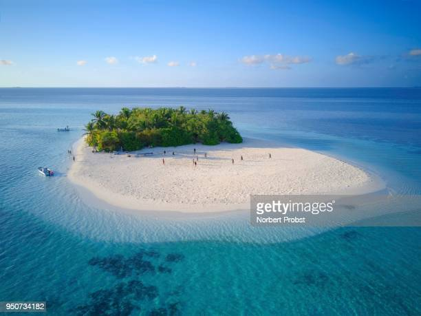 Uninhabited island for day trips with palm trees, bushes, sandy beach all around, offshore coral reef, Ari atoll, Indian Ocean, Maldives
