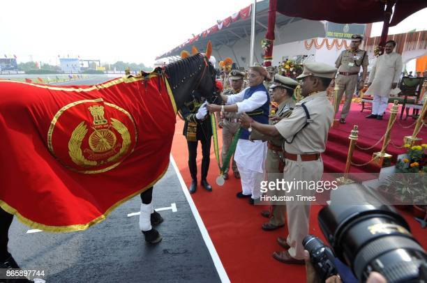 Union Home Minister Rajnath Singh felicitating a equestrian Black Beauty on October 24 2017 in Greater Noida India