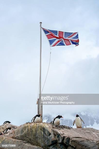 Union Jack Flag At Port Lockroy, Antarctica