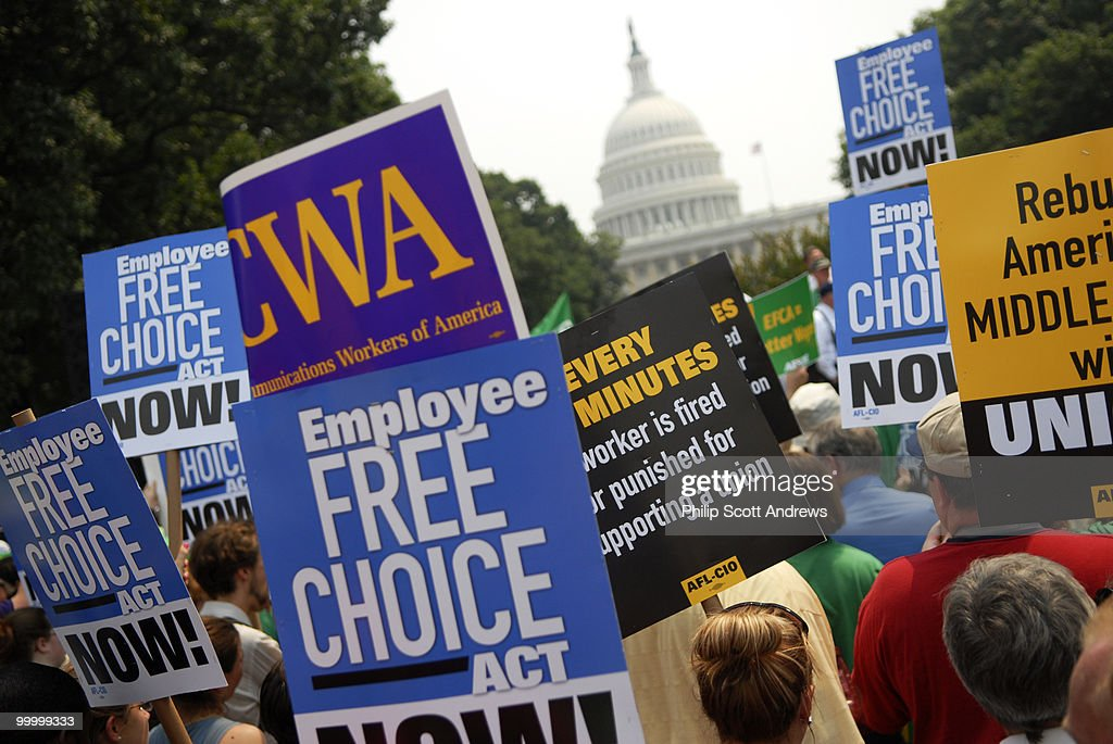 Union members hold signs at a pro labor rally in the Upper Senate Park. The rally was put on by The American Federation of State, County and Municipal Employees in support of the Employee Free Choice Act.