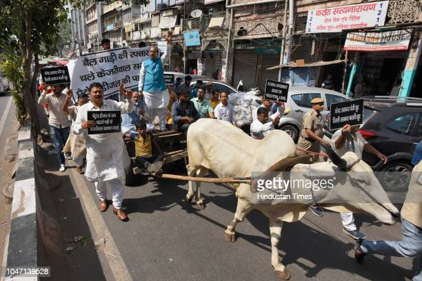 Union Minister Vijay Goel leads a bullock cart march from Red Fort to Sadar Bazar against Arvind Kejriwal's Government for not reducing the fuel...