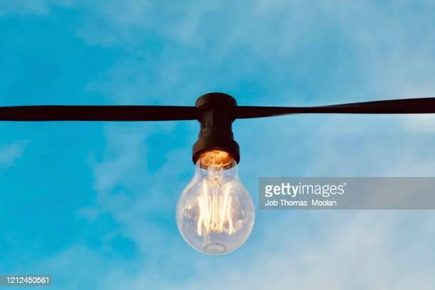 unique bulb design - beak stock pictures, royalty-free photos & images
