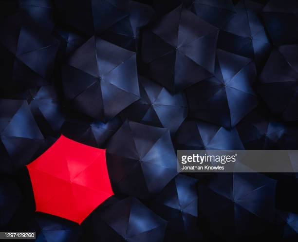 unique red umbrella - crowd stock pictures, royalty-free photos & images