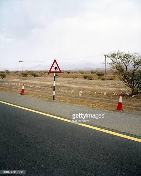 United Arab Emirates, Dubai, Hatta, camel warning road sign