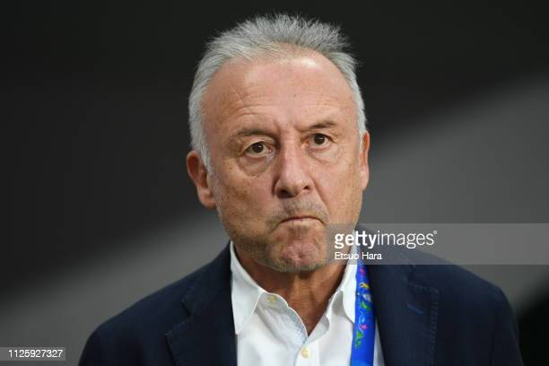 United Arab Emirates head coach Alberto Zaccherini looks on prior to during the AFC Asian Cup semi final match between Qatar and United Arab Emirates...