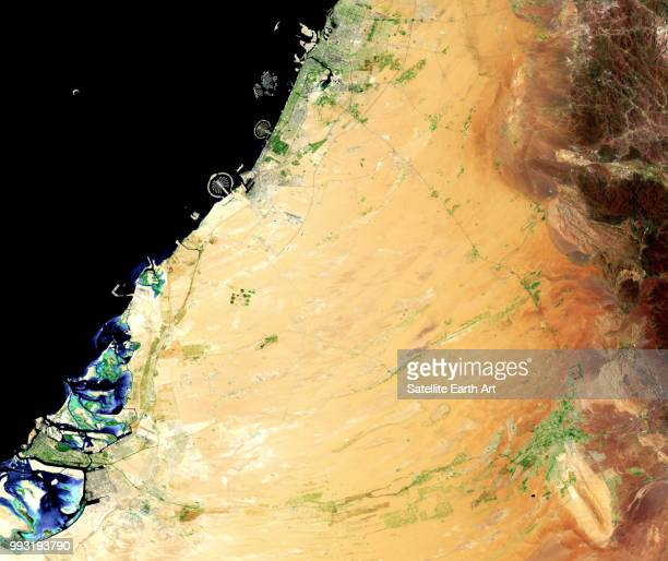 united arab emirates - gulf countries stock pictures, royalty-free photos & images