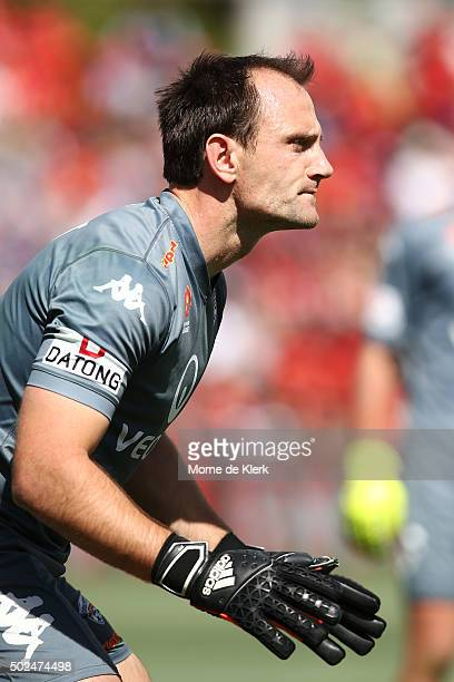 United goalkeeper Eugene Galekovic looks on during the round 12 ALeague match between Adelaide United and the Wellington Phoenix at Coopers Stadium...