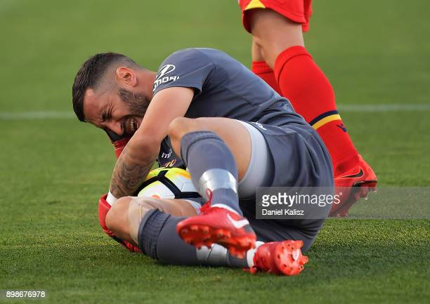 United goalkeeper Paul Izzo reacts during the round 12 ALeague match between Adelaide United and the Central Coast Mariners at Coopers Stadium on...