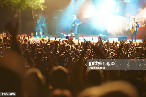united in their love for music - music festival stock pictures, royalty-free photos & images