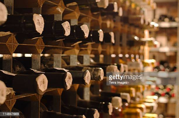 United Kingdom, Bristol, old wine bottles on cellar shelves