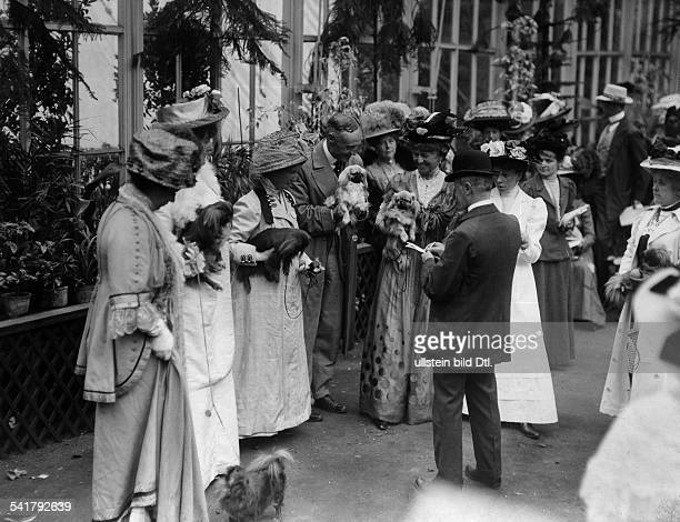 United Kingdom - England - London: dog show in the Botanical Garden, the judge giving points- Photographer: Bolak - Published by: 'Berliner...