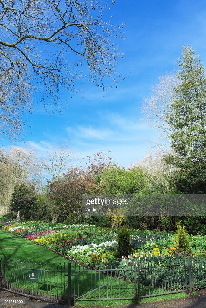 Saint James's Park. : News Photo