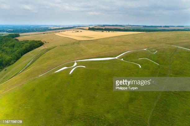 united kingdom, england. oxfordshire . the prehistoric uffington white horse - アフィントン ストックフォトと画像
