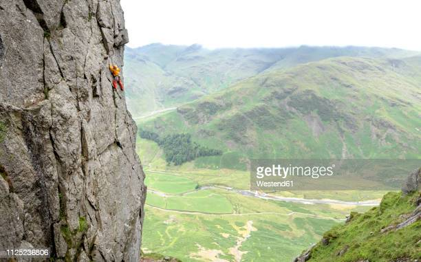 united kingdom, lake district, langdale valley, gimmer crag, climber on rock face - rock wall stock pictures, royalty-free photos & images