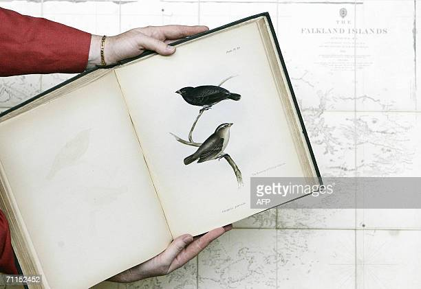 Pages from a book entitled 'The Zoology of the Voyage of HMS Beagle' by Charles Darwin is pictured over an original map of the Falkland Islands at...