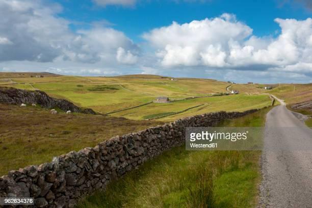 United Kingdom, Scotland, Highland, Sutherland, Assynt, Clashmore, dry stone wall